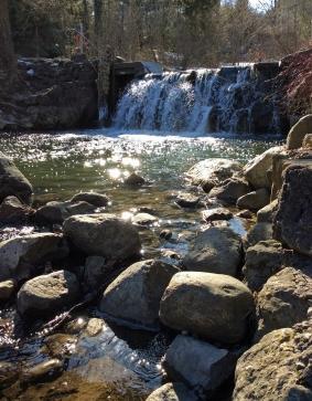 Wilket falls-EdwardGardens