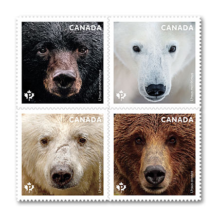 bears-stamps