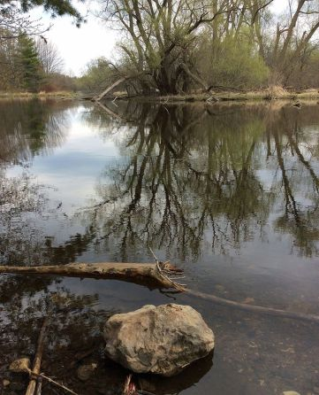 Eramosa River 3