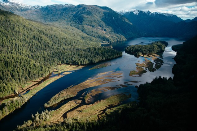 A river estuary in the Greaet Bear Rainforest.