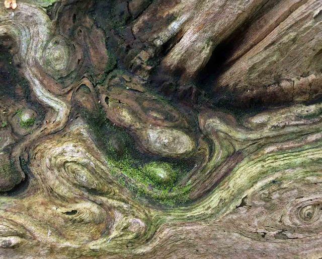 cedar log patterns3