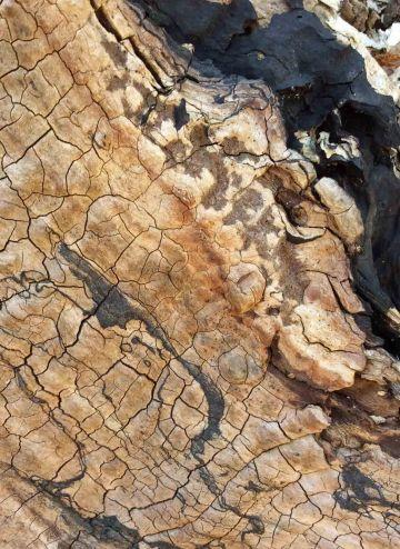 log patterns 5