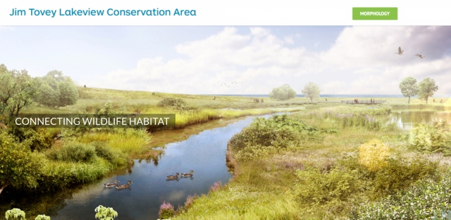 Marsh-connecting habitat copy